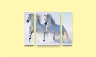 белые кони зима снег