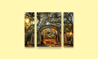 парк арка деревья закат